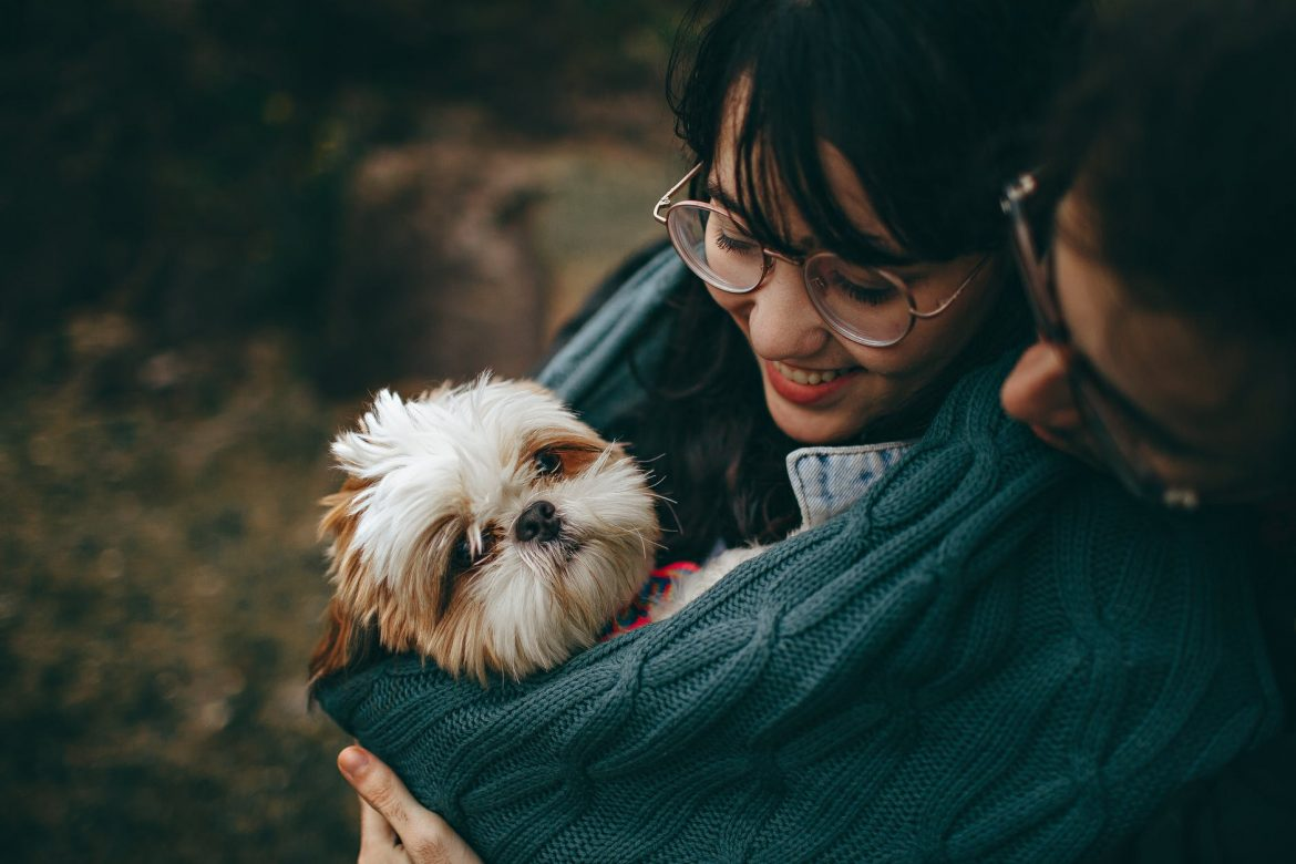 Moving to another country with Your Dog: Do and Don'ts